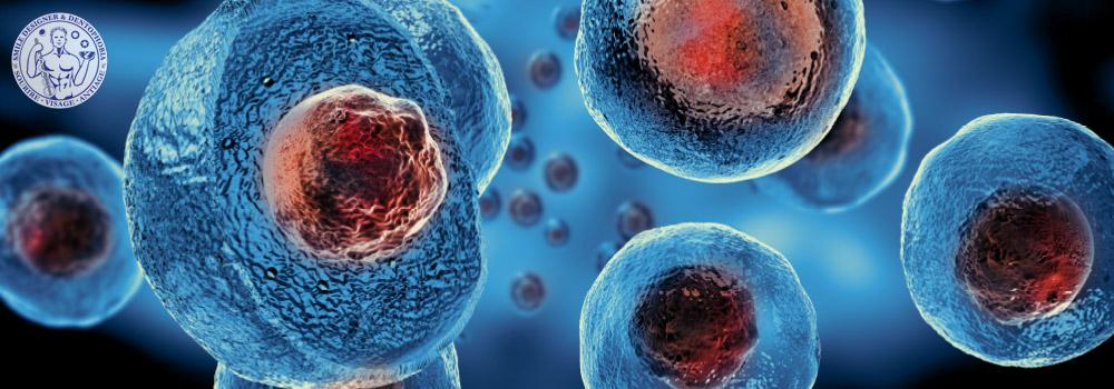 cellules souches  regeneration tissulaire  PRP PRF facteurs de croissance tissulaire
